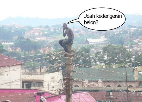 Orang di atas tiang listrik cari sinyal HP
