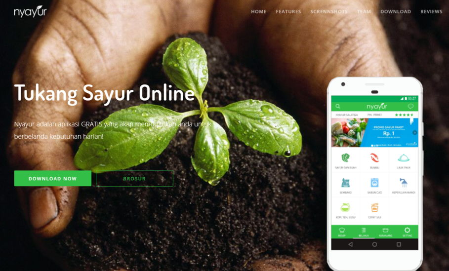 App belanja sayur online Nyayur