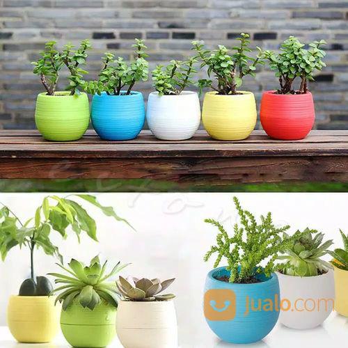 Pot tanaman plastik