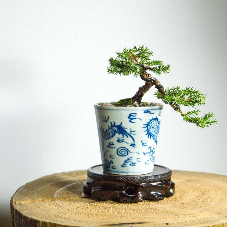 Pot tanaman porcelain