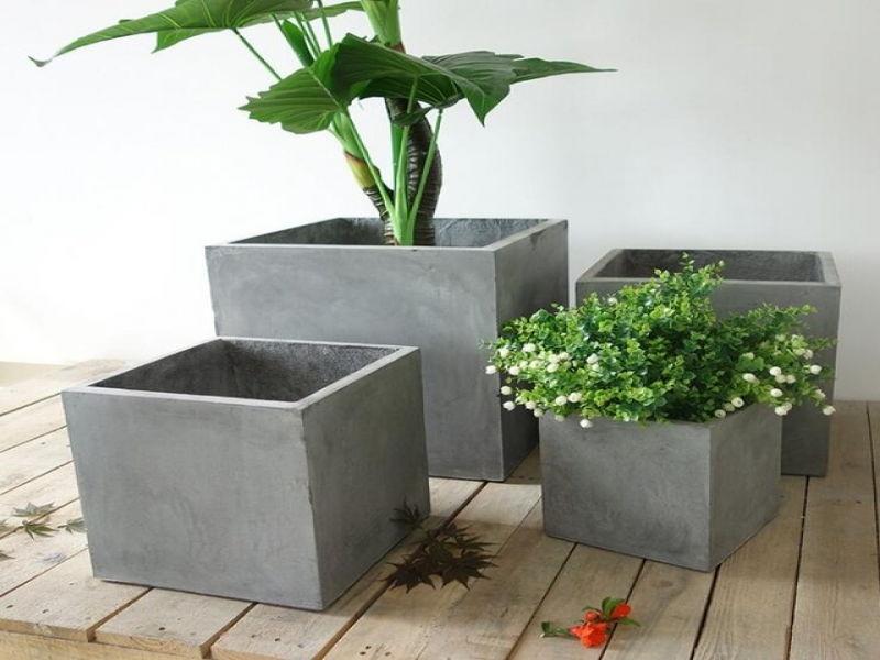 Pot tanaman semen