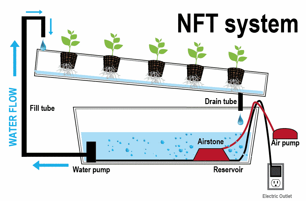 Gambar metode NFT aquaponik