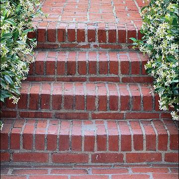 tangga bata