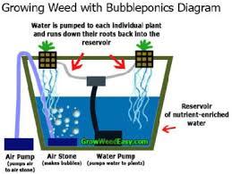 Gambar Metode Hidroponik Bubbleponic