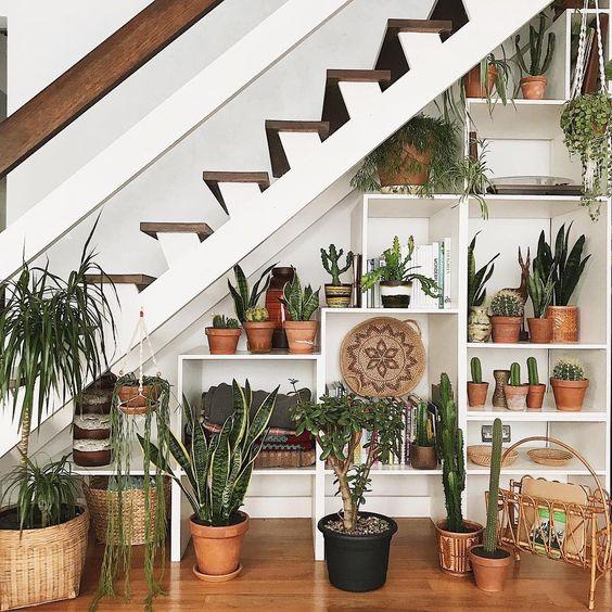 tanaman pot bawah tangga